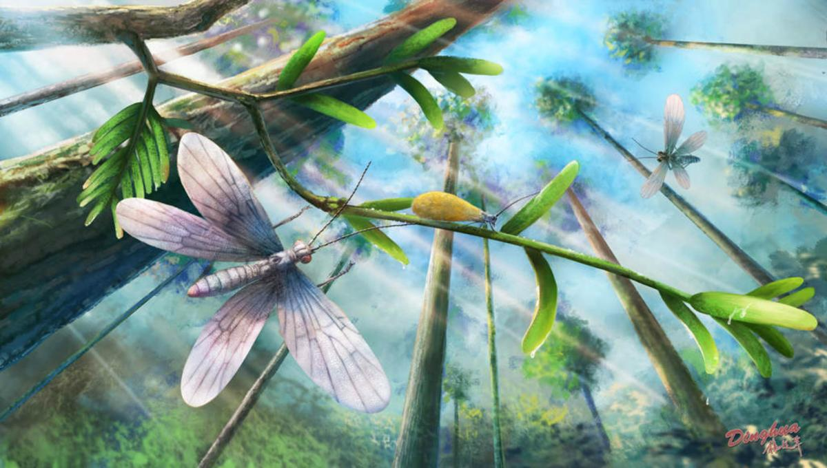 Ecological restoration of moths in the Cretaceous Burmese amber forest. Image credit: Dinghua Yang.
