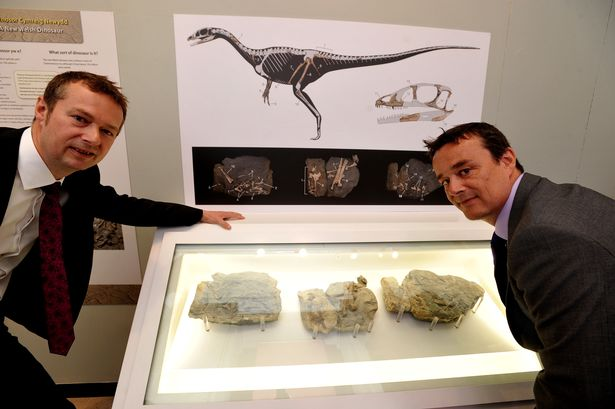 Nick and Rob pictured with their fascinating discovery at the National Museum in Cardiff