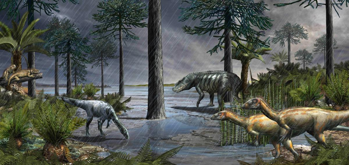 A life-scene from 232 million years ago, during the Carnian Pluvial Episode after which dinosaurs took over: a large rauisuchian lurks in the background, while two species of dinosaurs stand in the foreground, and some rhynchosaurs sit on the logs to the left; based on data from the Ischigualasto Formation in Argentina. Image credit: Davide Bonadonna.