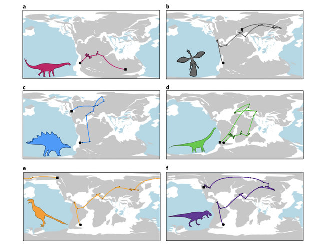 Six reconstructed evolutionary paths for the dinosaur species a) Rhoetosaurus brownei, b) Archaeopteryx lithographica, c) Stegosaurus stenops, d) Andesaurus delgadoi, e) Dromaeosaurus albertensis, f) Tyrannosaurus rex. | Ciara O'Donovan et al., Nature Ecology & Evolution